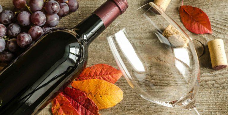 degustazione vini autunno