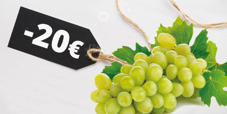 Vini bianchi sotto i 20 euro