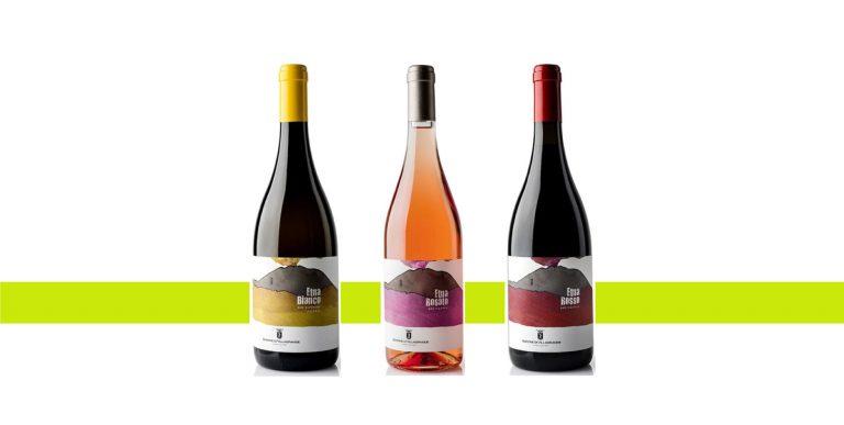 migliori vini vulcanici